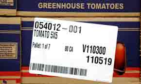tomato box; Brad Racino photo