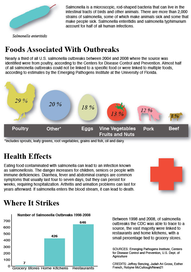 graphic of salmonella by the numbers